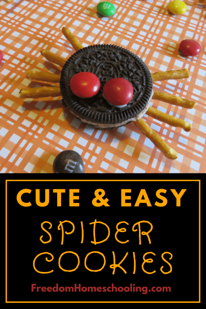 Cute and Easy Spider Cookies
