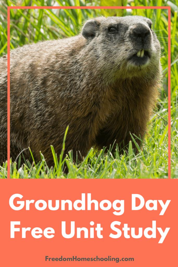 Groundhog Day Free Unit Study