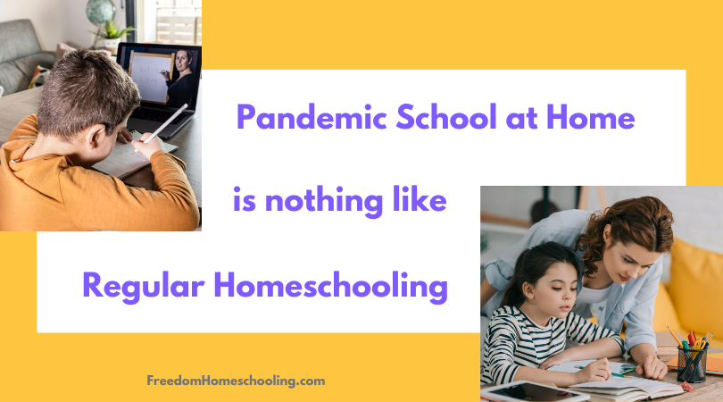 Pandemic School at Home is Nothing Like Regular Homeschooling