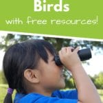 Learn About Birds With Free Resources